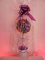Candy Tree from �19.99