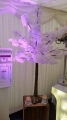 White blossom trees £30 per table Inc mirror plate or log slice or available in the love or platinum